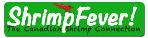 Shrimp Fever Promo Codes